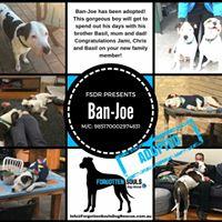 Ban-Joe
