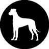 Forgotten Souls Dog Rescue
