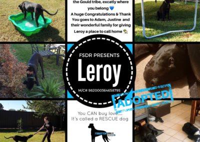 Leroy