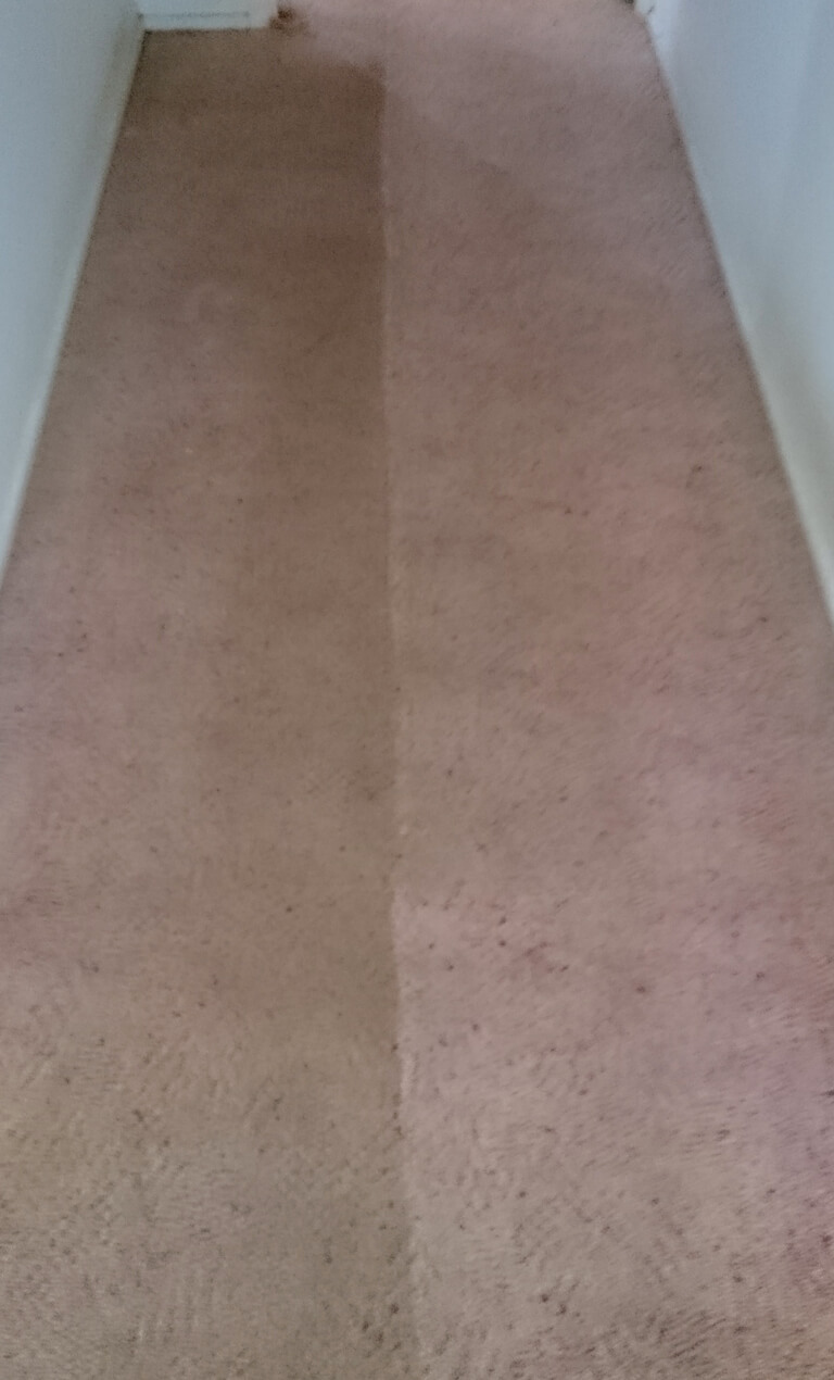 Fraser Coast Carpet & Pest servicing Hervey Bay, Maryborough & Surrounds - Hallway before and after carpet cleaning