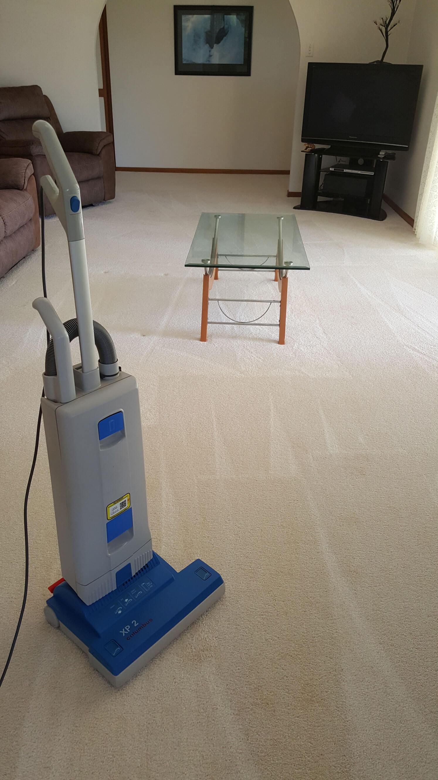 Fraser Coast Carpet Amp Pest Carpet Cleaning Amp Pest Control